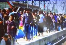 beschäftigung von flüchtlingen in deutschland